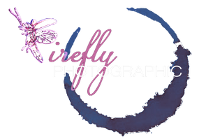 Wedding Photographer Sussex Firefly